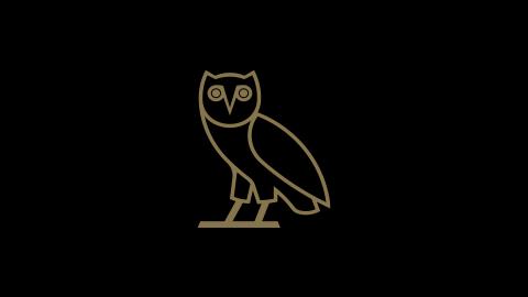 Drake night ryan massiah voltagebd Images