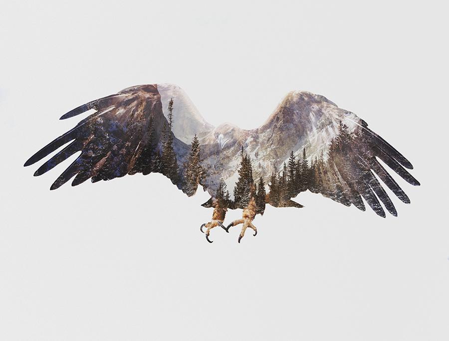 Andreas Lie, The Arctic: Arctic Eagle, doppia esposizione digitale