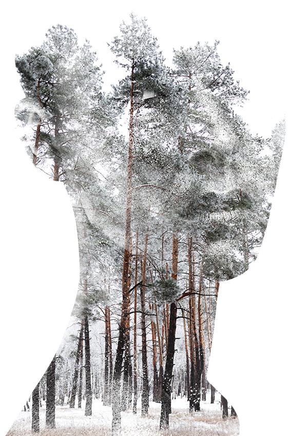 Andreas Lie, Insight, doppia esposizione digitale
